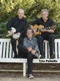 Uit in de Liemers - Trio Pagero - Foto 2